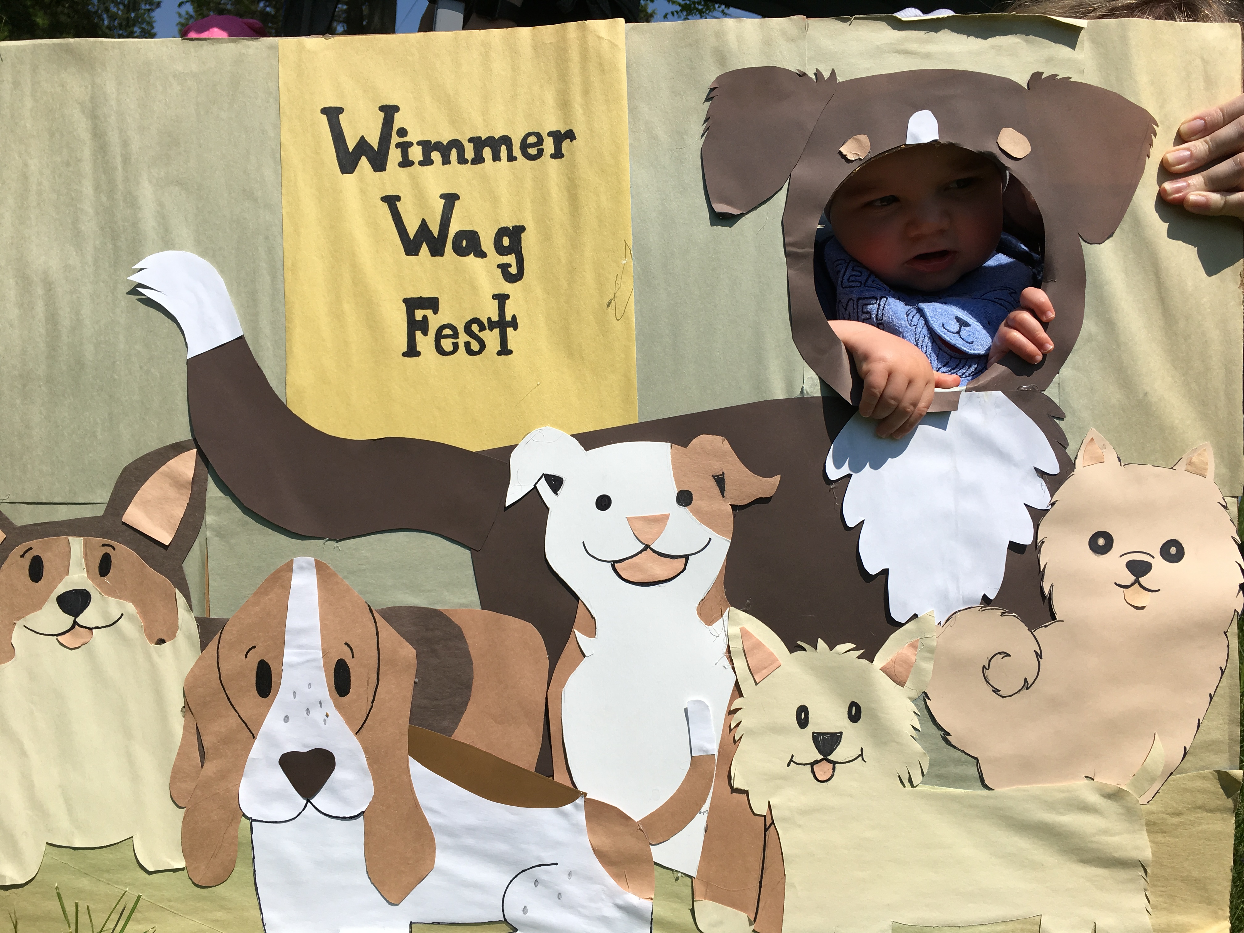 wimmer wag fest
